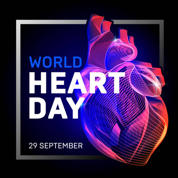 Vector human body heart with abstract 3d geometry lines and gradient waves art to medical world health heart day or medicine cardiology anatomy or  biology science organ wireframe on dark background Vector human body heart with abstract 3d geometry lines and gradient waves art to medical world health heart day or medicine cardiology anatomy or  biology science organ wireframe on dark background biology stock illustrations