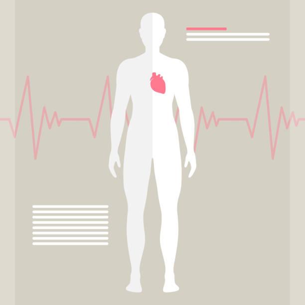 Royalty Free Clip Art Of Human Body Internal Organs Clip Art, Vector ...