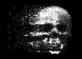 ベクトル人間粒子スカル