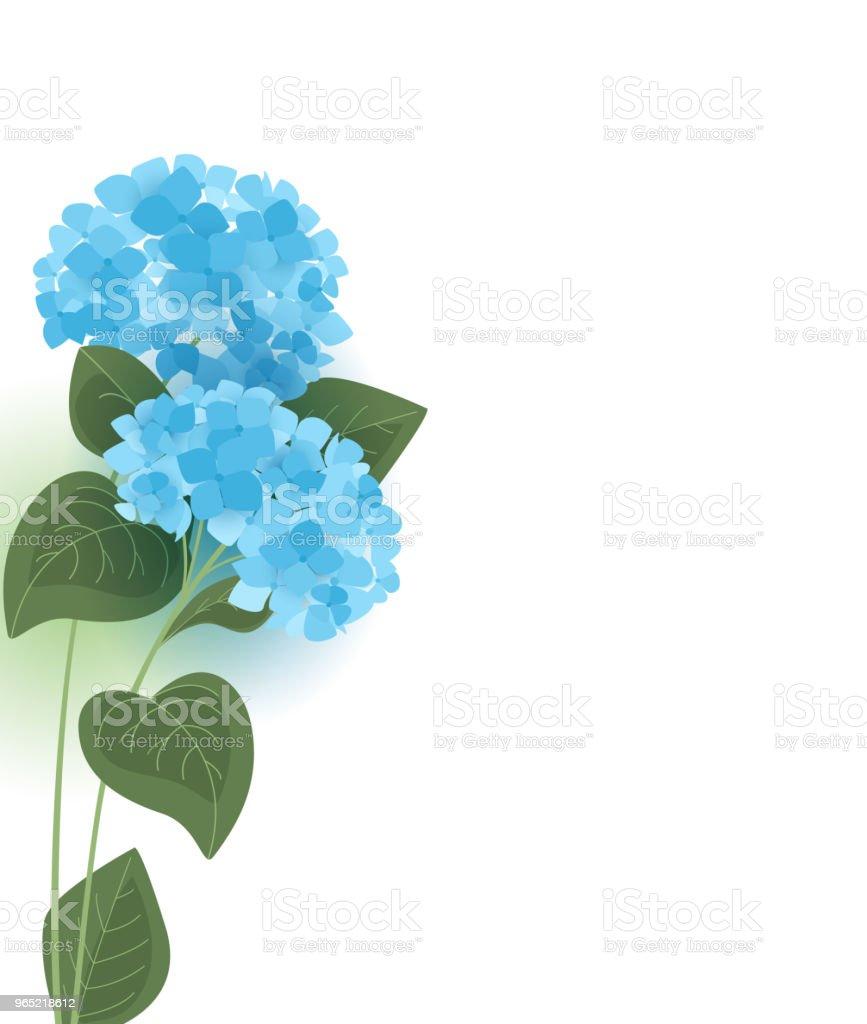 Vector hydrangea flower vector hydrangea flower - stockowe grafiki wektorowe i więcej obrazów bez ludzi royalty-free