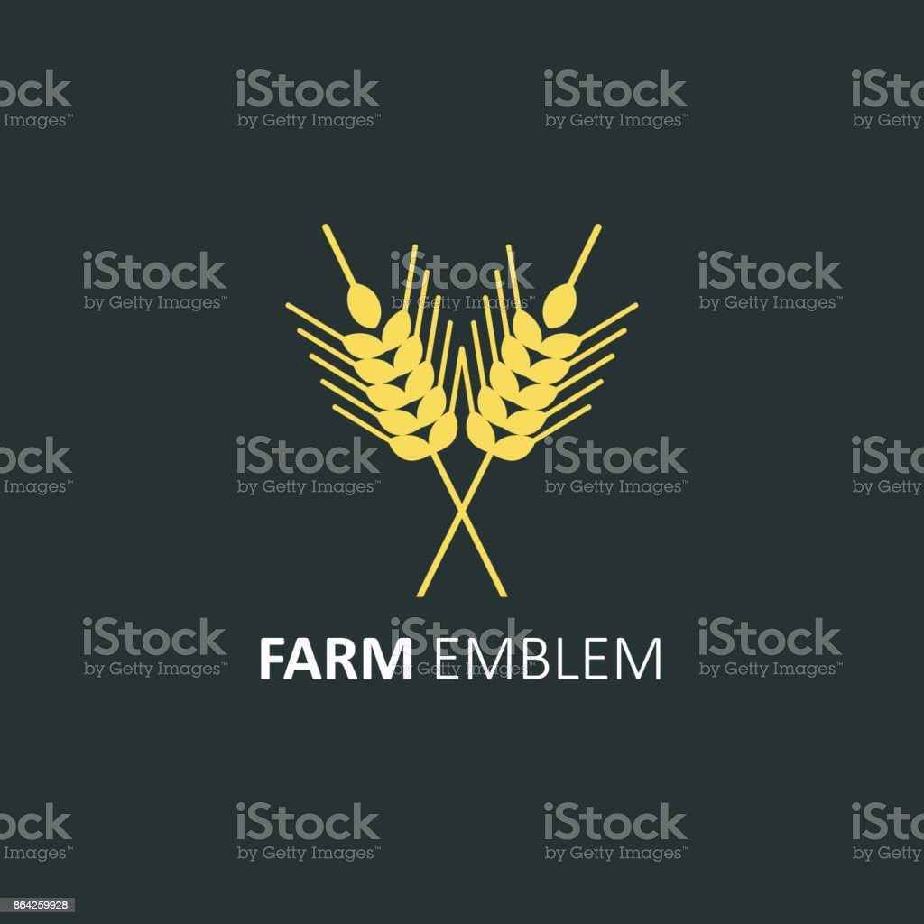 Vector icon design template in flat style - wheat ears. Spikes of rye. Isolated vector element. royalty-free vector icon design template in flat style wheat ears spikes of rye isolated vector element stock vector art & more images of agriculture