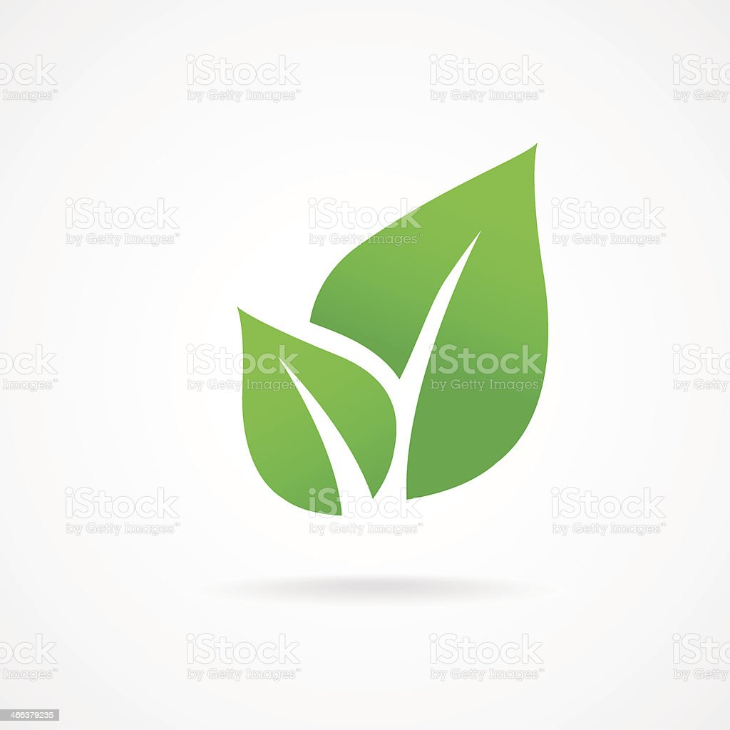 vector icon leaf vector art illustration