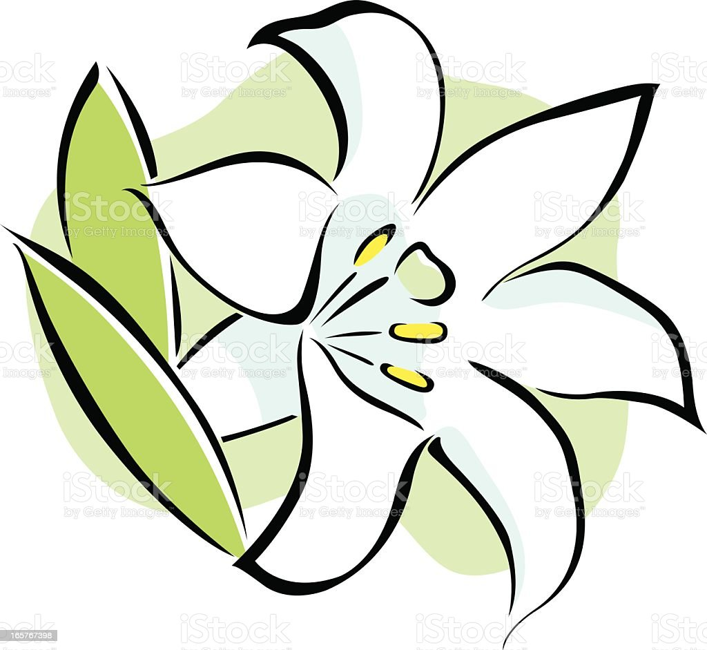 vector icon of an easter lily flower on white background stock rh istockphoto com easter lily border clip art easter lily clip art border