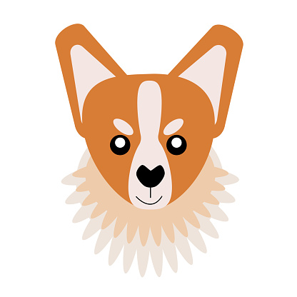 Vector icon portrait of a small dog drawn in the style of flat. Cute Corgi, dog logo. Vector illustration in cartoon style. Toy dog