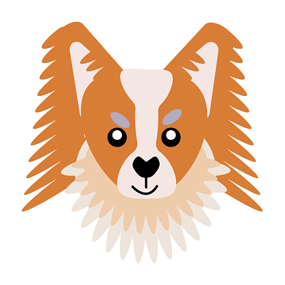 Vector icon portrait of a small dog drawn in the style of flat. Cute Papillonl dog logo. Vector illustration in cartoon style. Toy dog