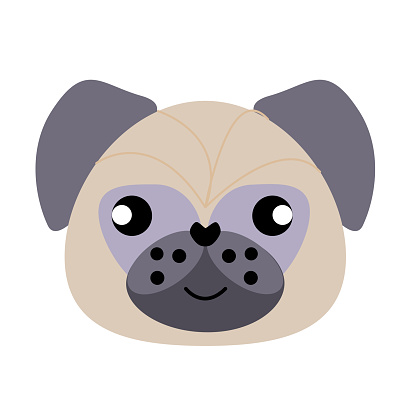 Vector icon portrait of a small dog drawn in the style of flat. Cute pug dog logo. Vector illustration in cartoon style. Toy dog