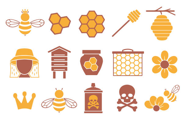 Vector icon set for creating infographics related to bees, pollination and beekeeping like honey jar, flower and honeycomb icon set queen bee stock illustrations
