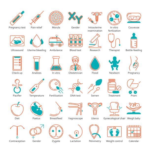 ilustraciones, imágenes clip art, dibujos animados e iconos de stock de vector conjunto de iconos - planificación familiar