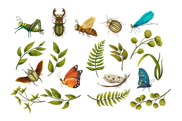 vector icon set with cute 3d insect. - bugs stock illustrations
