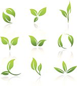Collection of vector icons of green leaves. This file is saved in EPS10 format.