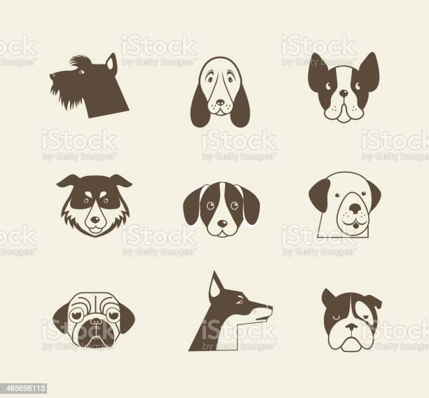 Vector icons of dogs in brown and beige colors vector id465698113?b=1&k=6&m=465698113&s=612x612&h=xoqx0ikl7ukoelh2gokh eygch6hh 4jyrbohrkkbsg=