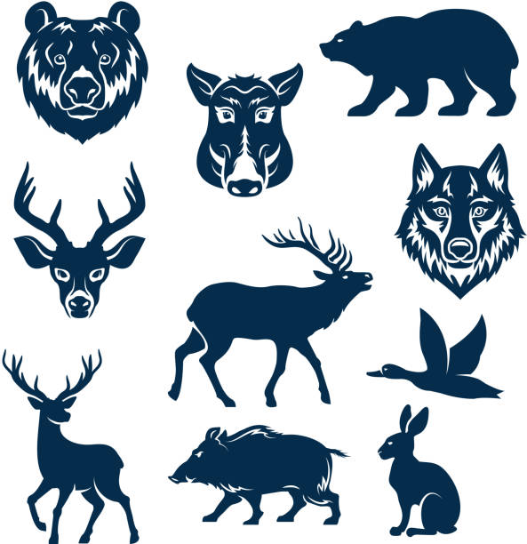 Vector icons of wild animals and birds for hunting vector art illustration