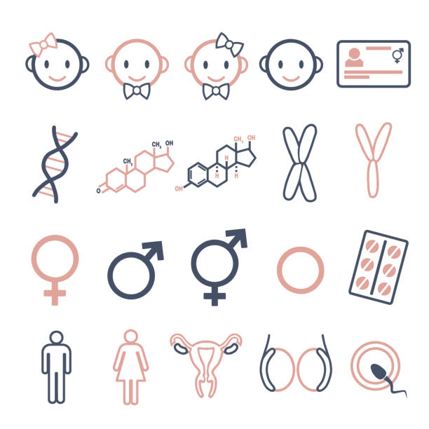 Vector icons set for creating infographics related to gender, transgender and Intersex like DNA, hormone pills, male and female hormones inforgraphic icon set hormone stock illustrations