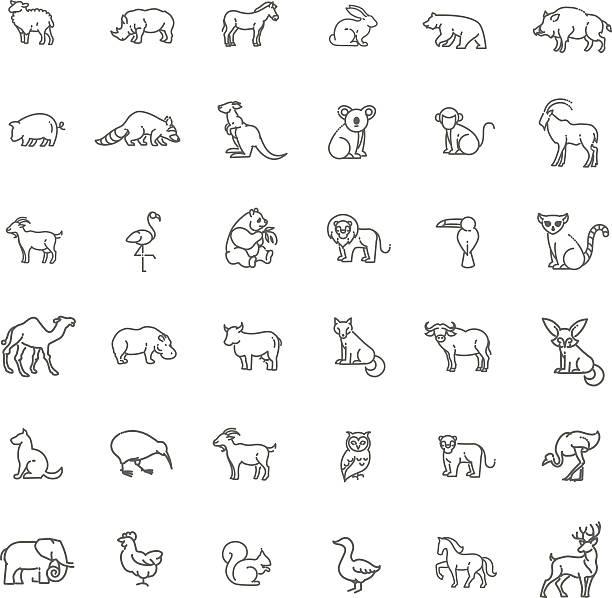 ベクトルのアイコン。動物園です。動物 - 動物園点のイラスト素材/クリップアート素材/マンガ素材/アイコン素材