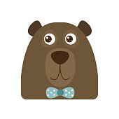 Vector illustrated bear head.