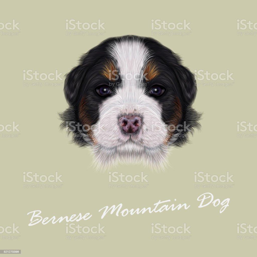 Vector Illustrated portrait of Bernese Mountain puppy. vector art illustration