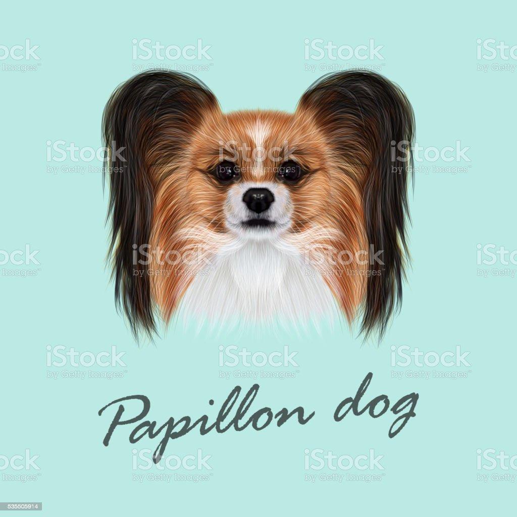 Vettoriale Illustrato Ritratto Di Papillon Cane - Immagini vettoriali stock  e altre immagini di Animale - iStock