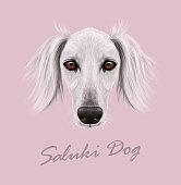 Vector Illustrated Portrait of Saluki Dog