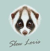Vector Illustrated Portrait of Slow loris