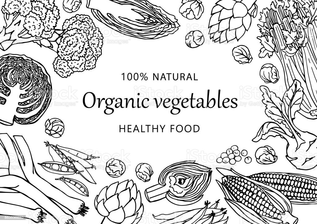 vector illustrated template with different vegetables doodle healthy