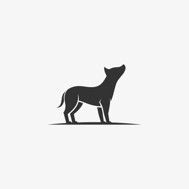 bildbanksillustrationer, clip art samt tecknat material och ikoner med vektor illustration american pit bull silhouette style. - abstract silhouette art