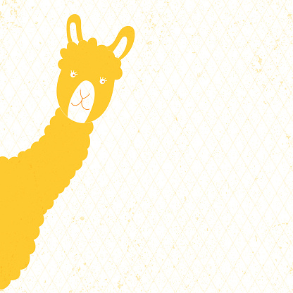 Vector illustration animal yellow llama. Place for text.