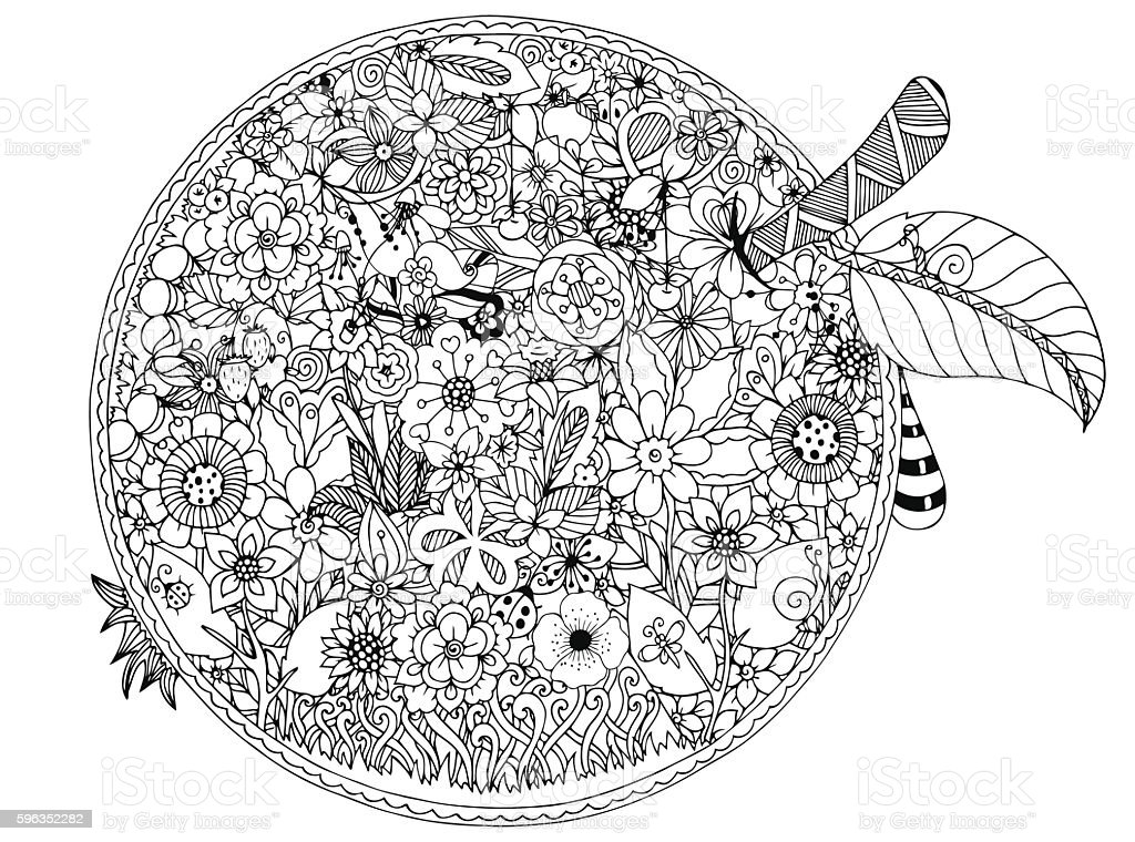 Vector illustration, apple flowers. Doodle drawing. Coloring book anti stress Lizenzfreies vector illustration apple flowers doodle drawing coloring book anti stress stock vektor art und mehr bilder von ausmalen