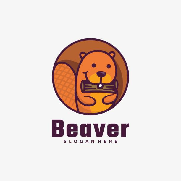 Vector Illustration Beaver Simple Mascot Style. Vector Illustration Beaver Simple Mascot Style. mammal stock illustrations