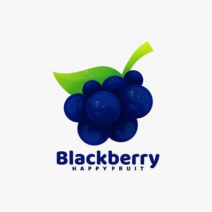 Vector Illustration Black berry Gradient Colorful Style.