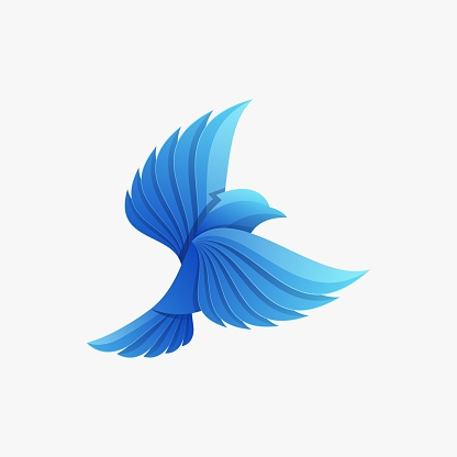 Vector Illustration Blue Jay Gradient Colorful Style.