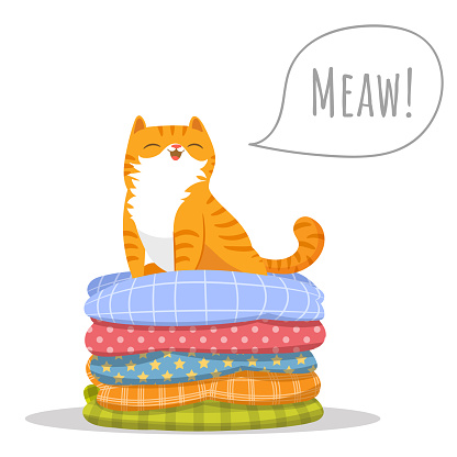 Vector illustration character design cute orange cat sitting comfortably on top of a pile of colorful cushions pillows. Pets concept draw doodle cartoon style.