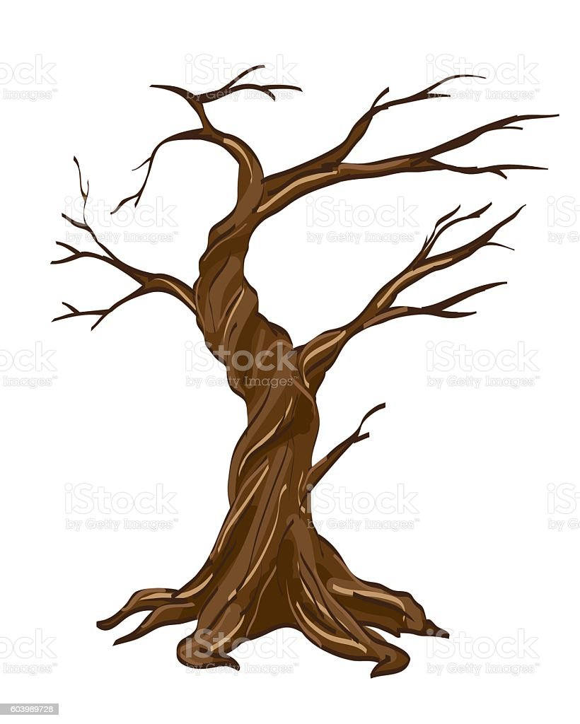 Vector illustration dry tree isolated white
