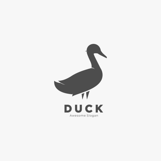 Vector Illustration Duck Pose Silhouette Style. Vector Illustration Duck Pose Silhouette Style. ducking stock illustrations