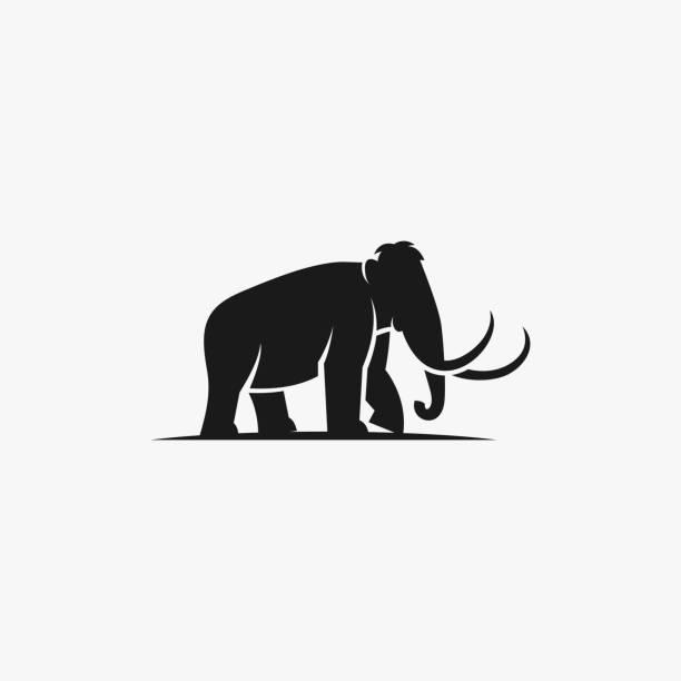 bildbanksillustrationer, clip art samt tecknat material och ikoner med vektor illustration elefant silhuett stil. - abstract silhouette art