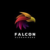 Vector Illustration Falcon Gradient Colorful Style.