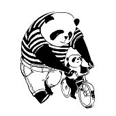 Vector illustration. Father panda in black and white t-shirt is teaching cycling by bicycle his little son panda