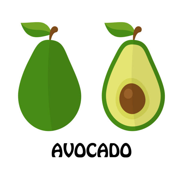Vector Illustration Flat Avocado isolated on white background , minimal style , Raw materials fresh fruit Vector Illustration Flat Avocado isolated on white background , minimal style , Raw materials fresh fruit avocado icons stock illustrations