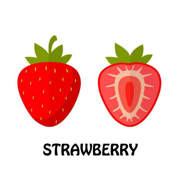 illustrazioni stock, clip art, cartoni animati e icone di tendenza di vector illustration flat strawberry isolated on white background , minimal style , raw materials fresh fruit - fragole