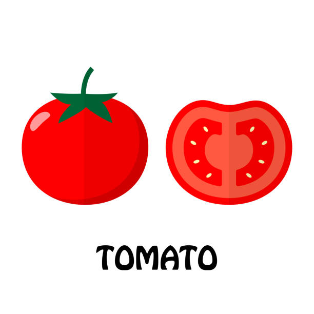 vector illustration flat tomato isolated on white background , raw materials fresh vegetable - tomato stock illustrations