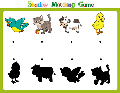 Vector illustration for learning  shadow of different shapes. For children witch  4 cartoon images Bird, Cat, Cow, Chick.