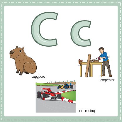 Vector illustration for learning the letter C in both lowercase and uppercase for children with 3 cartoon images. Capybara Car racing Carpenter.