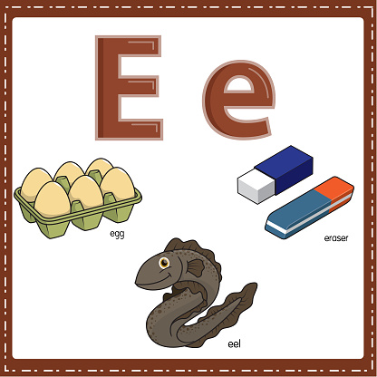 Vector illustration for learning the letter E in both lowercase and uppercase for children with 3 cartoon images. Elephant Envelope Eight.