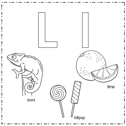 Vector illustration for learning the letter L in both lowercase and uppercase for children with 3 cartoon images. Lizard Lollipop Lime .