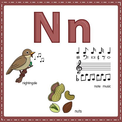 Vector illustration for learning the letter N in both lowercase and uppercase for children with 3 cartoon images. Nightingale Nuts Note music.