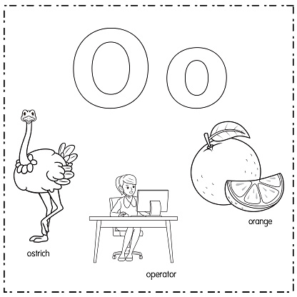 Vector illustration for learning the letter O in both lowercase and uppercase for children with 3 cartoon images. Ostrich Operator Orange.