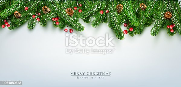 Vector illustration for Merry Christmas and Happy New Year . Greeting card with New Year's with  green branches of pine, snow, coneson  on grey background. Template,  postcard, flyer, congratulatory, brochure