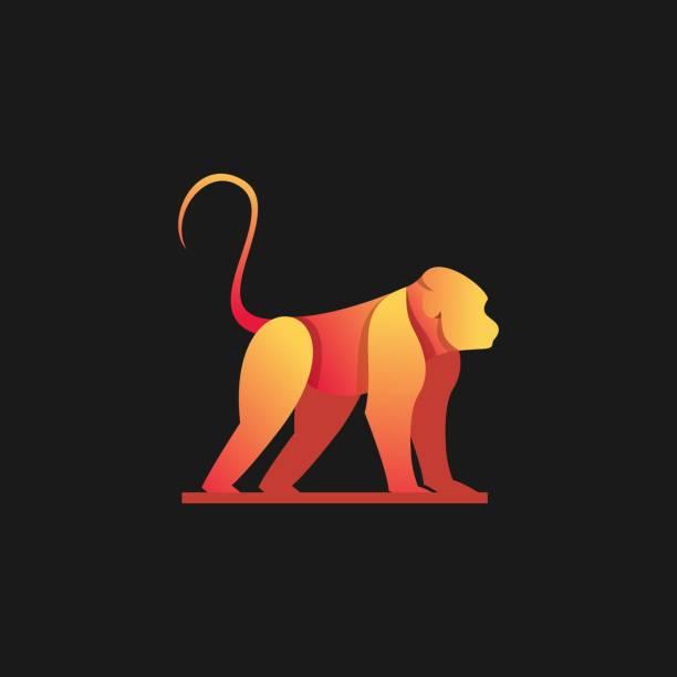 Vector Illustration Forest Monkey Gradient Colorful. Vector Illustration Forest Monkey Gradient Colorful. marmoset stock illustrations