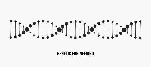 ilustraciones, imágenes clip art, dibujos animados e iconos de stock de ilustración vectorial de adn. concepto de ingeniería genética - adn