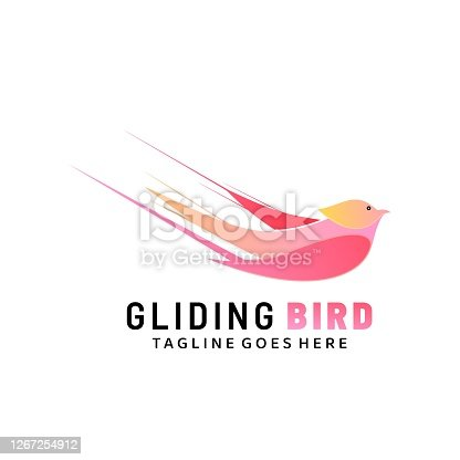 Vector Illustration Gliding Bird Gradient Colorful Style.