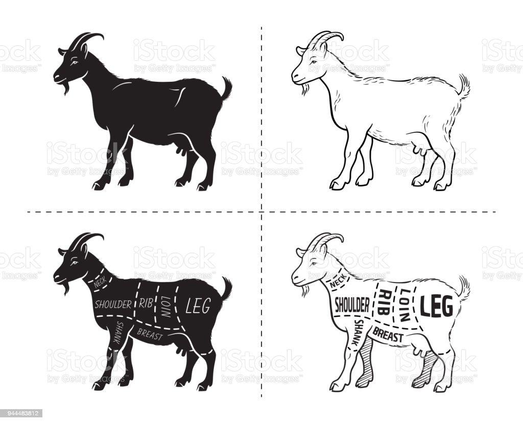 Vector Illustration Goat Cuts Diagram Or Chart Goat Black Silhouette ...